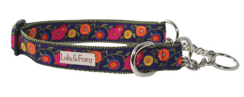 Lola & Foxy Wildflower Dog Martingale Collar, Fits 10 to 16-Inch Neck