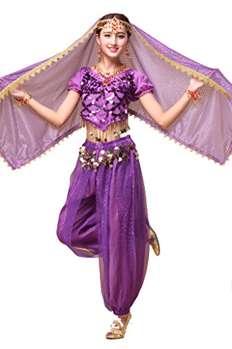 [ZLTdream Lady's Indian Dance Costume Chiffon Purple] (Purple Belly Dance Costume)