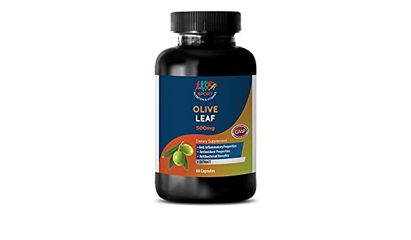Amazon.com: Immune system support pills - OLIVE LEAF EXTRACT 500mg - Olive leaf extract supplement - 1 Bottle 60 Capsules: Health & Personal Care