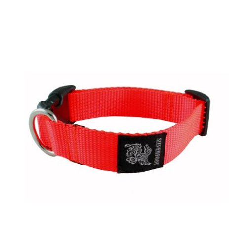 Silverfoot The Hunter Dog Collar (Medium)