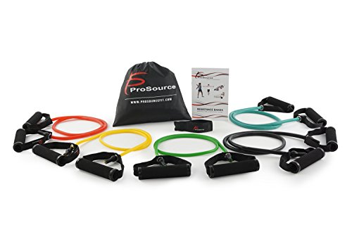 ProSource Tube Resistance Bands Set with Attached Handles, Door Anchor, Carrying Case and Exercise Guide – DiZiSports Store