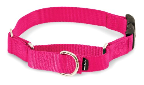 PetSafe Martingale Collar with Quick Snap Buckle, 1