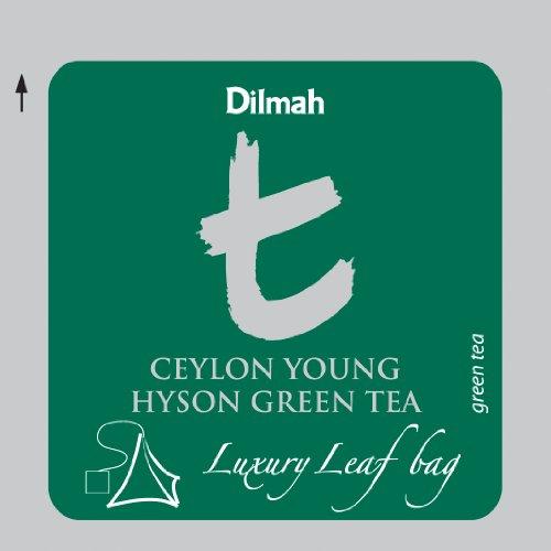 Dilmah | Ceylon Young Hyson Green Tea | T-series Biodegradable 100 Luxury Leaf Sachets in Foil Envelopes | Food Service Pack | 15% More Tea than Retail Pack | 2 Grams Per Sachet