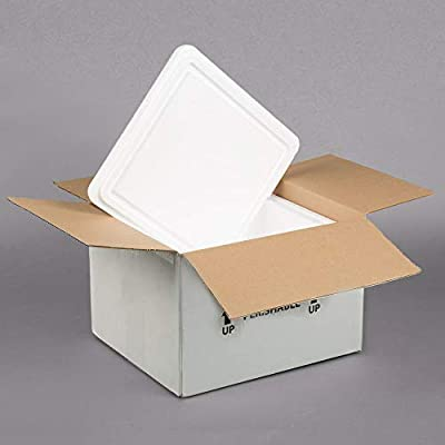 Enfriador de poliestireno aislado de 12 x 10 x 7 pulgadas con caja ...