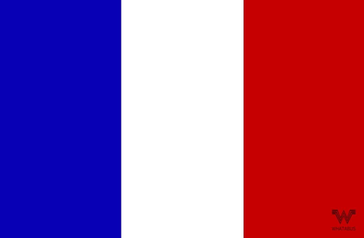 Whatabus Frankreich Flagge Aufkleber Länderflagge Als Sticker 8 5 X 5 5 Cm Auto