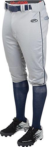 Rawlings Men's Launch Knicker Piped Baseball Pant Gray/Navy Stripe Medium