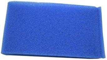 Polti Filtro Esponja Agua Motor Azul Vaporetto Lecoaspira Lecologico AS850 as805: Amazon.es: Hogar