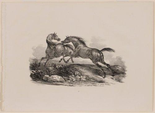 Horses Chasing