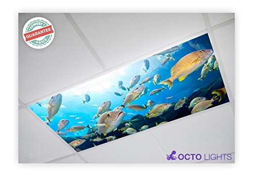 Decorative Fluorescent Light - Ocean 004 2x4 Flexible Fluorescent Light Cover