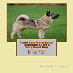 Train Your Norwegian Elkhound to be a Very Good Dog
