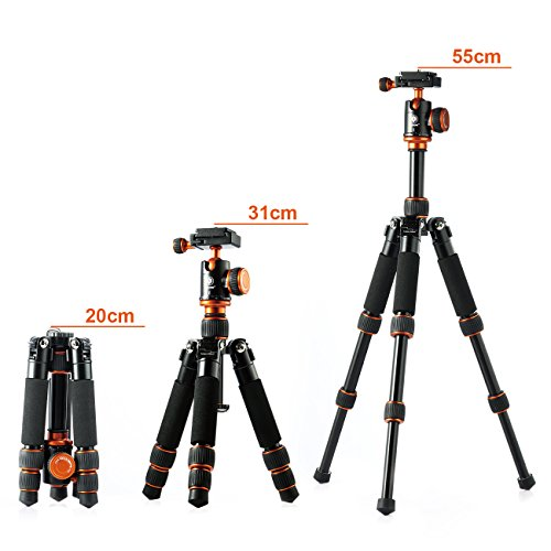 TARION Q166 Camera Tripod Desk Tripod with Ball Head Quick Release Plate for DSLR Camera Mini Tripod