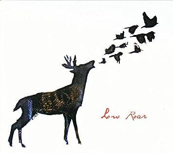 Amazon low roar low roar low roar voltagebd Images