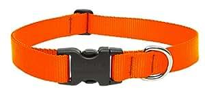 "LupinePet Basics 1"" Blaze Orange 12-20"" Adjustable Collar for Medium and Larger Dogs"