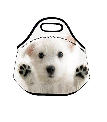 Top Dog Lunch Box - 7