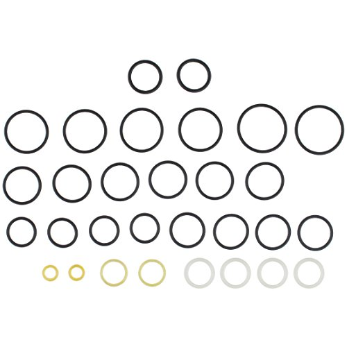 RPM Deluxe SmartParts GOG Oring Kit for Epiphany, Ion, IonXE, SP1, Vibe, eNVy, eNMEy - Most Commonly Needed OEM O-Rings X 2
