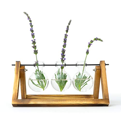 Desktop Indoor Plant Stand - Propagation Station with Hanging Glass Vases for Aesthetic Room Decor (Vase Bohemian)