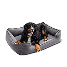 """Petsbao Premium Dog Bed with 4"""" Solid Memory Foam 