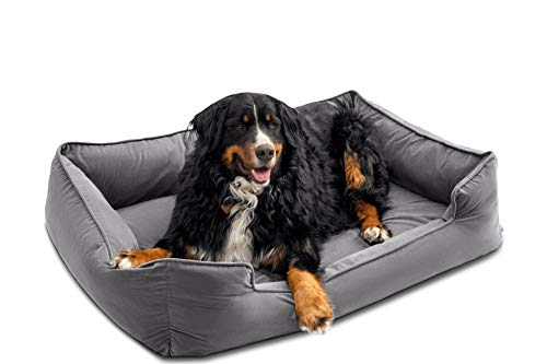 Petsbao Premium Dog Bed with 4