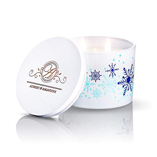 Aubert & Amandine COMFORT Limited Edition Aromatherapy Scented Soy Candle w 3 Wick Stress Relief Candles Velas Aromaticas (Apple Cinnamon)
