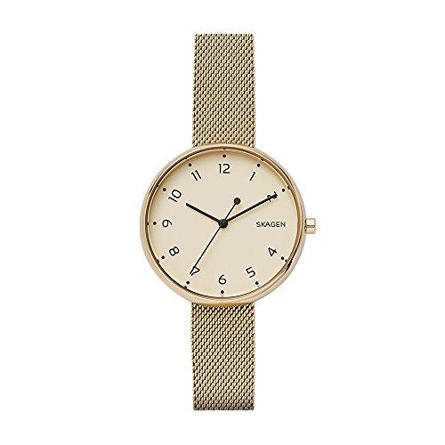 Skagen Ladies Mesh (Skagen Women's Signatur Quartz Watch with Stainless-Steel Strap, Gold, 14 (Model: SKW2625))