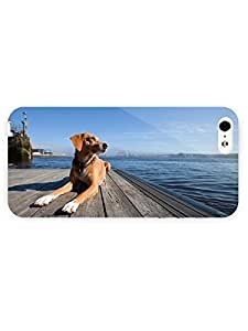 3d Full Wrap Case for iPhone 5/5s Animal Dog26