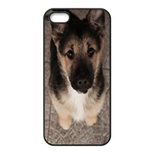 Case For Sam Sung Note 2 Cover Case Cute Puppy of German Shepherd, [Black]