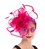 Fascinator Haojing Feather Mesh Flower on a Headband and a Clip Royal Tea Party Derby Headwear for Girls and Women(Hj2-Fuschia)