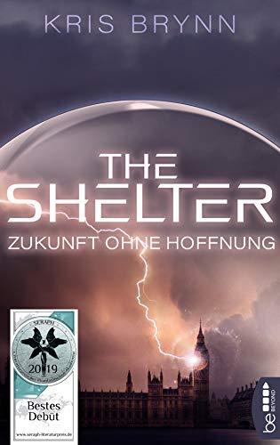 Image result for The Shelter, Kris Brynn