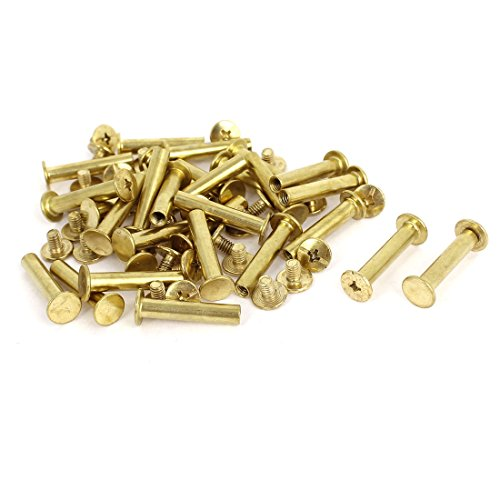 25mm Brass Plated Binding Chicago Screw Post 30pcs (Brass And Leather)
