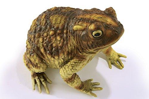 Latex Frog - 10
