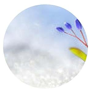 alfombrilla de ratón la flor del azafrán de primavera - ronda - 20cm
