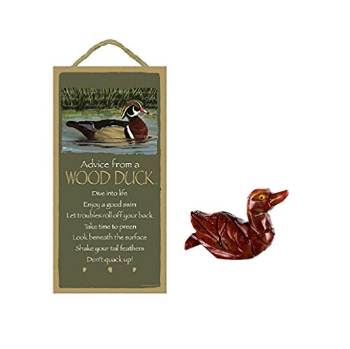 WolfDreamsDecor 5 X 10 Advice from A Wood Duck Wood Plaque Inspirational Sign with Miniature Dolomite Hand-Carved Figurine