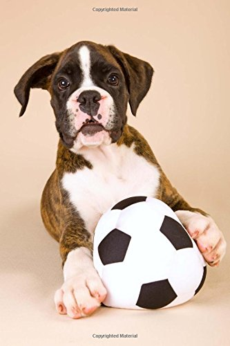 So Cute Boxer Puppy with a Toy Soccer Ball Journal: 150 Page Lined (Print Soccer Boxers)
