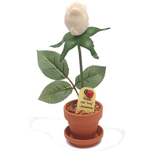 14th Year Wedding Anniversary Gift, Potted Artificial Ivory Desk Rose, Perfect Present for Wife or Husband ()