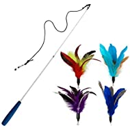 EcoCity Cat Toys - Cat Teaser Toys - Include Cat Wand and Natural Feather Refills (5 Pack)