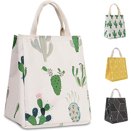 HOMESPON Reusable Lunch Bag Insulated Lunch Box Cute Canvas Fabric with Aluminum Foil, Printed Lunch Tote Handbag Fordable for Women,Men,School, Office (Cacti)