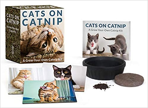 cats on catnip a grow your own catnip kit miniature editions
