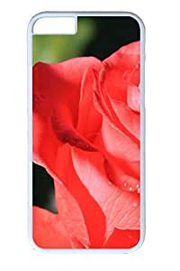 Beautiful Red Rose 4 Cover Case Skin for iPhone 6 Hard PC White