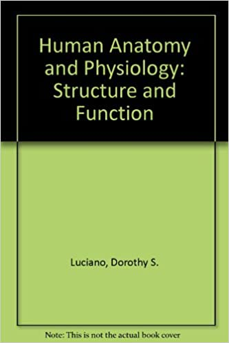 Human Anatomy And Physiology Structure And Function 9780070389625