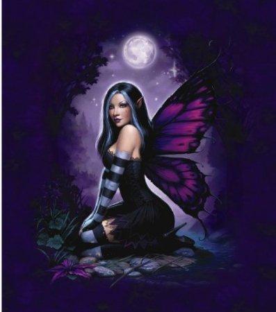 - Night Fairy Queen SizeSuper Soft Plush Mink Blanket 79