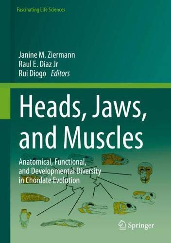 Heads Jaws And Muscles  Anatomical Functional And Developmental Diversity In Chordate Evolution  Fascinating Life Sciences