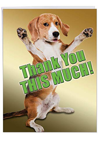 J2232TYG Jumbo Funny Thank You Card: This Much Dog With Envelope (Extra Large Version: 8.5'' x 11'') (Thank You Card From Dog)
