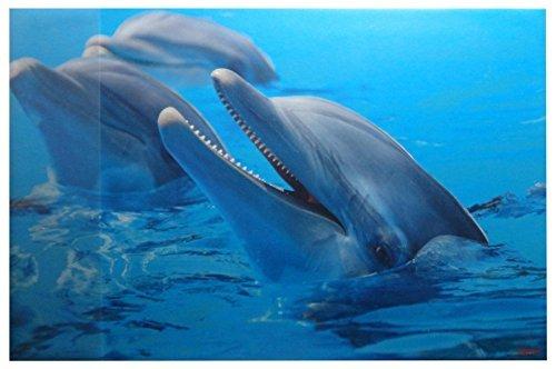 Sous-main 38,5/x 58,5/cm//dauphins