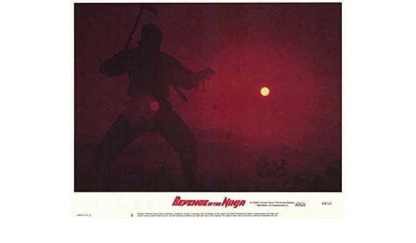 Amazon.com: Revenge of the Ninja (D) POSTER (11