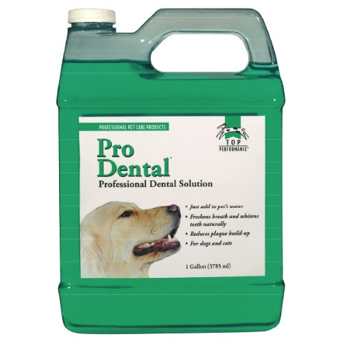 Top Performance ProDental Solution - Innovative Solution for Cleaning Pets' Teeth and Gums, Gallon