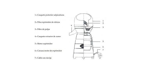 CubetasGastronorm - INTERRUPTOR PALANCA O/F EXPRIMIDOR LOMI - 204059: Amazon.es: Hogar