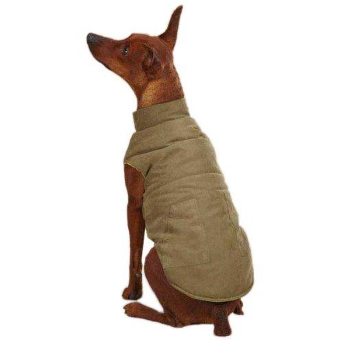 Zack & Zoey Ivy League Pet Vest, X-Small, Chive