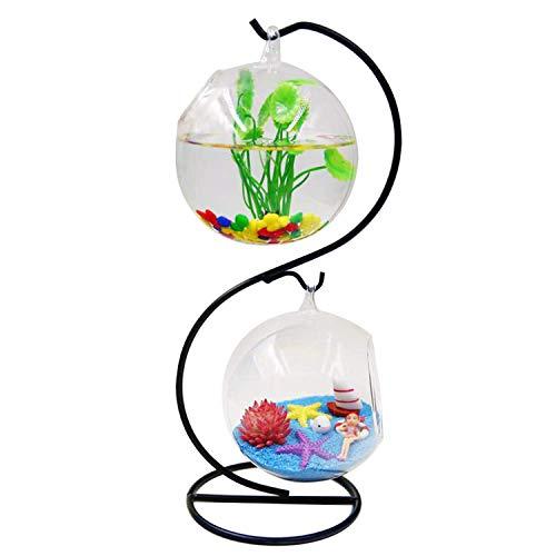 Fasmov Clear Glass Vase Plant Terrarium Hanging Planter Terrarium with Metal Stand, 2 Globe