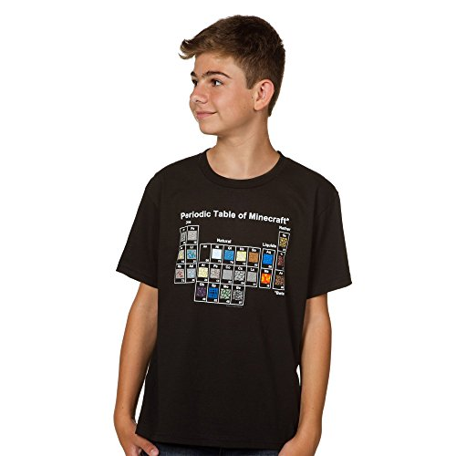 Minecraft Boys' Periodic Table Youth Tee (Large)