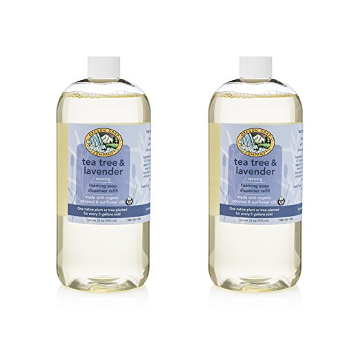 Oregon Soap Company - Foaming Castile Hand Soap REFILL, Made with USDA Certified Organic Oils (32 oz (2 Pack), Tea Tree Lavender)